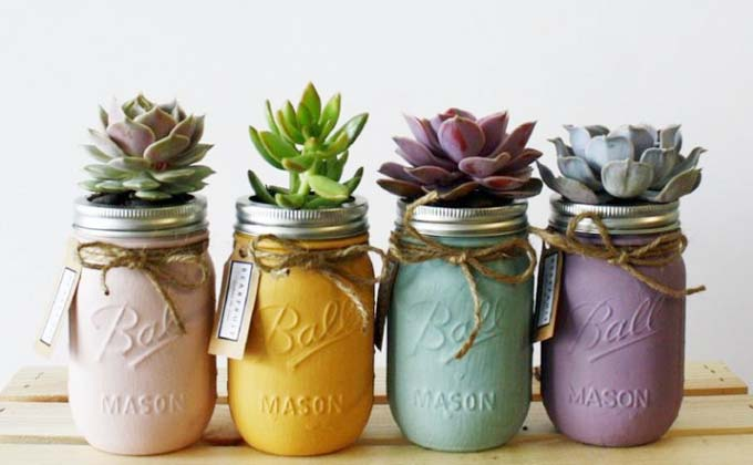 methodofraising-succulent-02