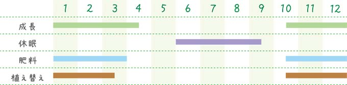 methodofraising-succulent-17